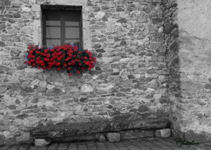 Yvoire, Evian, Rocca 555