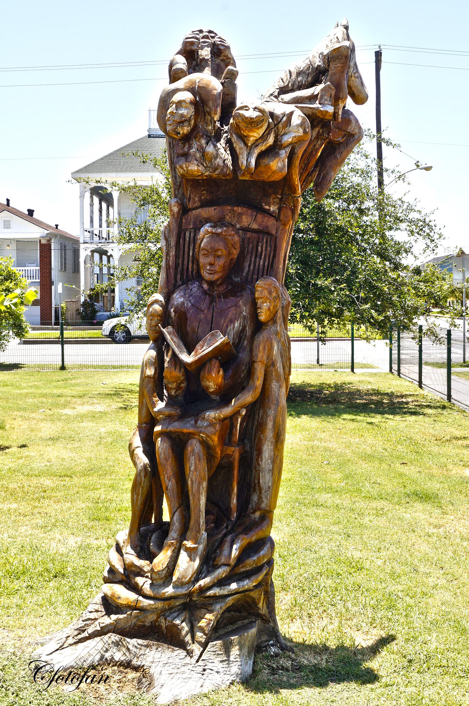 Galveston s dead tree sculptures…las esculturas de árboles