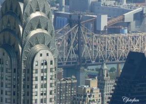 New York 513