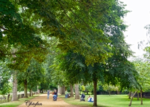 2013-08-16 Oxford 057