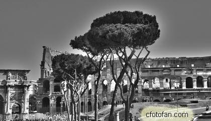 2013-08-21 Roma 080