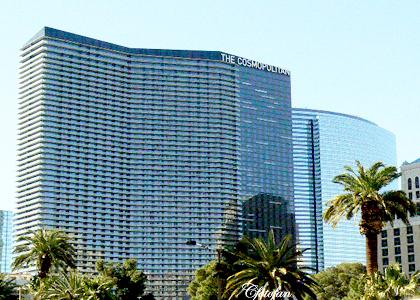 9-14 Feb 2013, Las Vegas 390