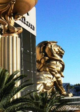 9-14 Feb 2013, Las Vegas 403
