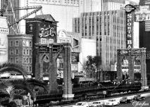 9-14 Feb 2013, Las Vegas 408