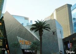 9-14 Feb 2013, Las Vegas 417