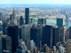 New York 502