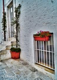 2013-08-27 Alberobello 018