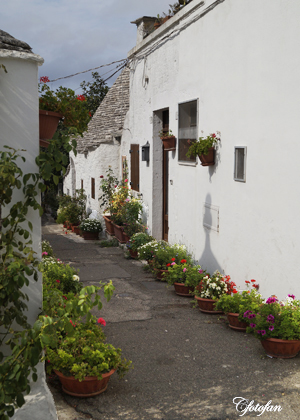 2013-08-27 Alberobello 093