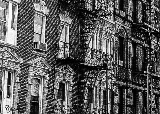 New York 067