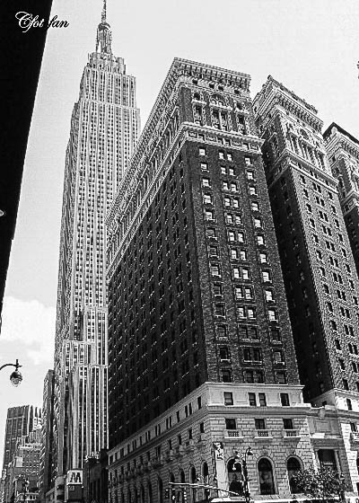 New York 565
