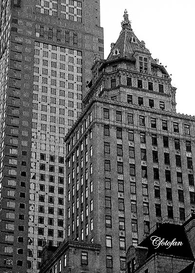 New York 053