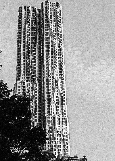 New York 206