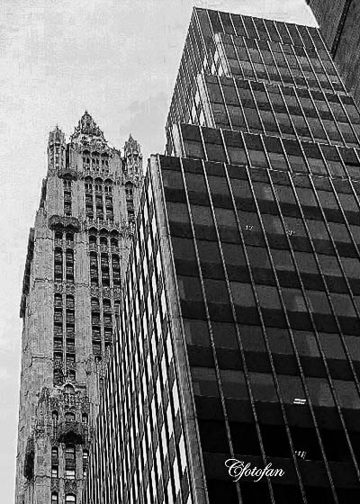 New York 209
