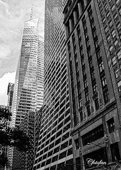 New York 239