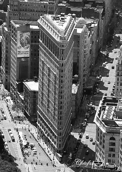New York 536