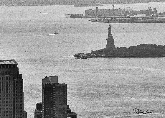 New York 537
